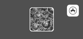 BioAgents App